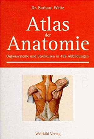 Shop Anatomie Books and Collectibles   AbeBooks: Wiss. Antiquariat...
