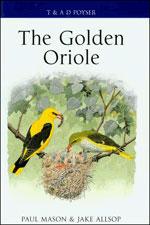 The Golden Oriole: MASON, Paul; ALLSOP, Jake