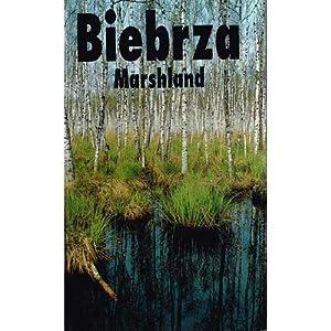 Biebrza Marshland: Klosowski, Tomasz and Grzegorz