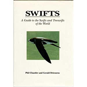 Swifts : A Guide to the Swifts: Chantler, Phil; Driessens,
