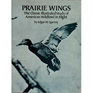 Prairie Wings- The Classic Illustrated Study of: Queeny, Edgar M.