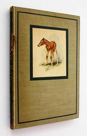 an anthology of essays david bartholomae Rent textbook ways of reading an anthology for writers by bartholomae, david - 9781457626852 price: $1000.