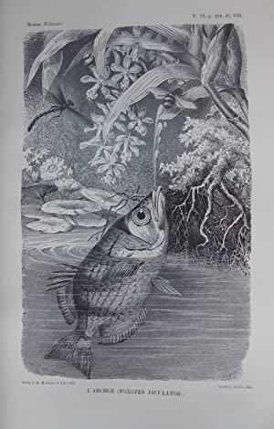 Les poissons et les crustacés. (Les merveilles de la nature).: BREHM (A. E.)
