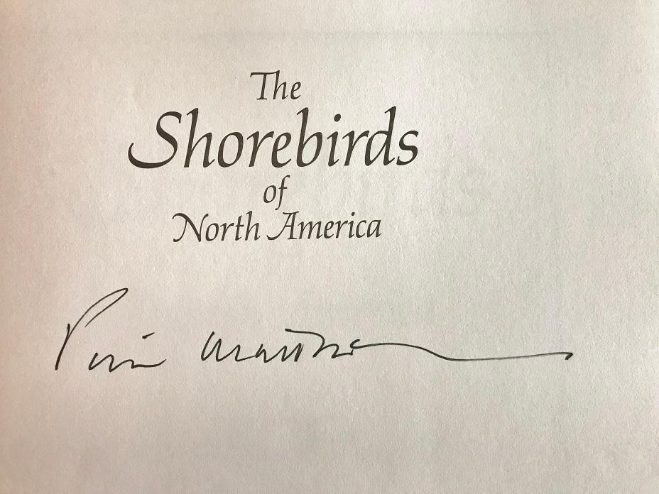 The Shorebirds Of North America