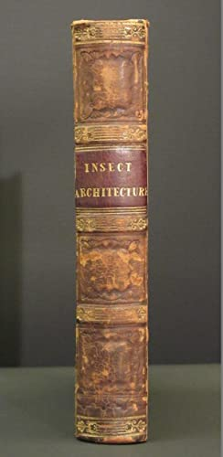 Insect Architecture: (The Library of Entertaining Knowledge)