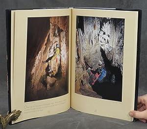 Heaven Below Earth: Motycka, Zdenek; Roselip, Miroslava (trans.)