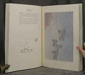 A Selection of Bird Paintings and Sketches: Rickman, Philip