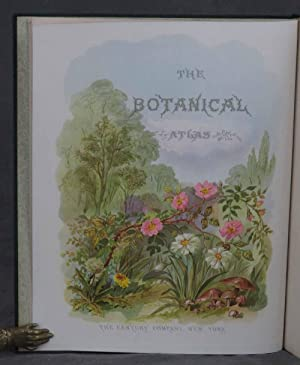 The Botanical Atlas: A Guide to the Practical Study of Plants containing Representatives of the ...