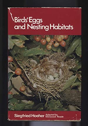 Birds' Eggs and Nesting Habitats: Hoeher, Siegfried