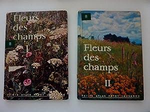 "FLEURS DES CHAMPS I / II"": Walter Rytz"