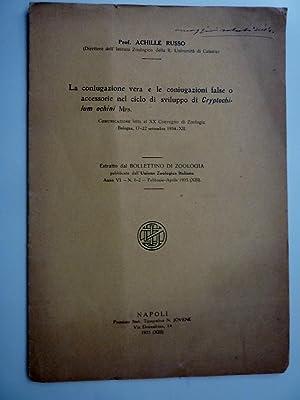 LA CONIUGAZIONE VERA E LE CONIUGAZIONI FALSE ACCESSORIE DEL CICLO DI SVILUPPO DI CRYPTOCHILUM ...