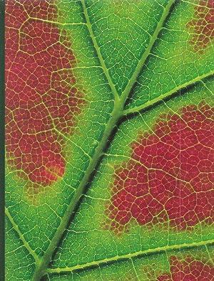 Plant Physiology.: Salisbury, F.B. &