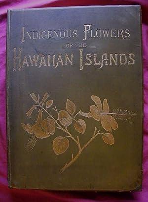 Indigenous Flowers of the Hawaiian Islands.: Sinclair, Isabella.