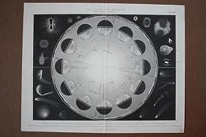 Die Erde/Jahreszeiten, The Earth/Its Seasons, Stich um 1840 aus dem Haus Blackie & ...