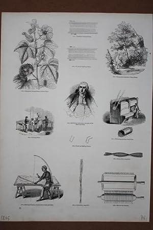 Baumwollverarbeitung, Cotton, Holzstich von 1845 mit 13 Einzelabbildungen, Blattgröße: ...