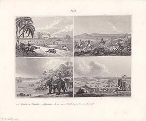 Großwildjagd, Ostindien, Elefanten, Stahlstich um 1845 mit vier Einzelabbildungen, Blattgr&...