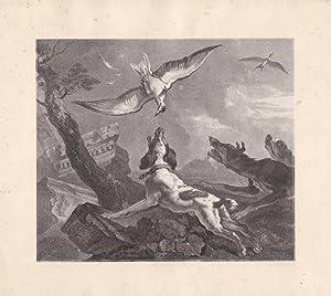Falkenjagd, Hunde, Lithographie von 1868 von A.C. Nunnink, Blattgröße: 20,8 x 23,2 cm, ...