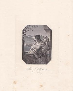 Der Edelfalke, The Falcon, Stahlstich um 1850 von G. Kneller Stuttgart, Blattgröße: 25 x...