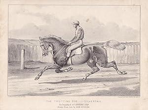 Jockey, The trotting cob - Silvertail, Rennpferd, Lithographie um 1870 nach Ben Herring, Blattgr&...