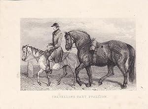 Travelling cart stallion, Reiter, Pferd, Klepper, Stahlstich um 1860, Blattgröße: 13 x ...