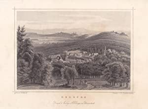 Rehburg, Steinhuder Meer, Stahlstich um 1850 von