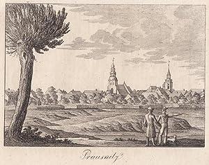 Prausnitz ( Kreis Militsch / Mittelschlesien ) - Gesamtansicht, im Vordergrund 2 Wanderer. ...