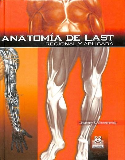 Dorable Anatomía Términos Regionales Regalo - Imágenes de Anatomía ...
