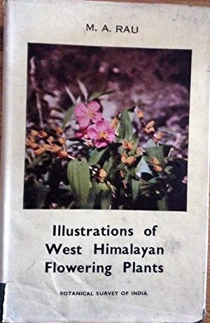 Illustrations of West Himalayan Flowering Plants: M A Rau