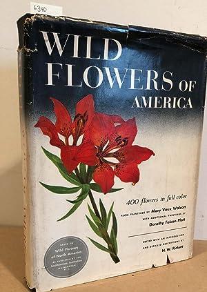 Wild Flowers of America 400 Flowers in: Walcott, Mary Vaux