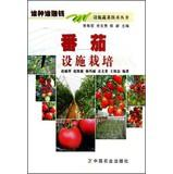 Vegetable Technology Series : Tomato cultivation(Chinese Edition): ZHAO LI PING