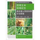Modern Vegetable Pest Control Series: peanut vegetable: LV PEI KE