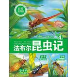 Fabre insect 4: Dragonfly Lightning pilots ( Mito painted version )(Chinese Edition): FA BU ER