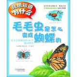 I want to know why the caterpillar becomes a butterfly is how: For Fun wacky reptiles 40 asked ...