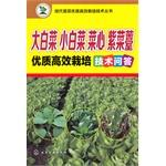 Quality and efficient modern vegetable cultivation techniques Series: Chinese cabbage. Chinese ...