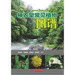 Common plant in Shennongjia(Chinese Edition): LI XIAO DONG . LI JIAN QIANG . LIU HONG TAO . JIU YAN...