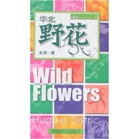 Wild Flowers in Huabei District(Chinese Edition): Wang Chen