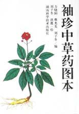 A Pocket Illustrated Dictionary of Chinese Herbal: Fang Xiaoyang