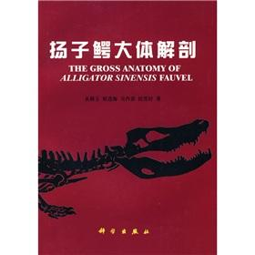 The Gross Anatomy of Alligator Sinensis Fauvel(In Chinese with English summary)(Chinese Edition): ...