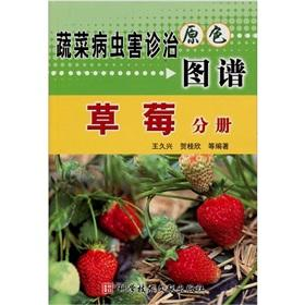 Vegetable pest diagnosis and treatment of primary color map: strawberry Volume(Chinese Edition): ...