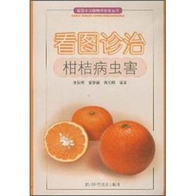 Pictures diagnosis and treatment of citrus pest(Chinese Edition): ZHANG QUAN BING DENG