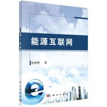 Energy Internet(Chinese Edition): SUN QIU YE ZHU