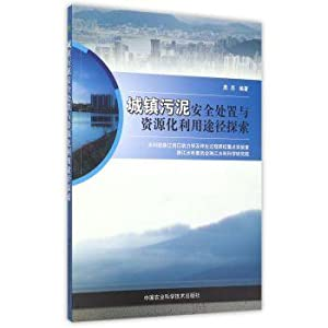 Towns sludge safe disposal and resource utilization in(Chinese Edition): HEI LIANG ZHU