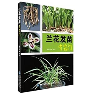 There are orchids sprouting tips(Chinese Edition): LU MING XIANG ZHU