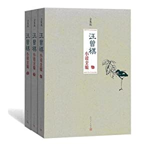 Fiction by the whole series (lower volume Complete Works edition package)(Chinese Edition): WANG ...