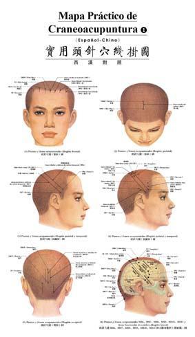 Mapa Práctico de Craneoacupuntura (Spanish-Chinese)(Chinese Edition): BEN SHE,YI MING