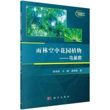 Rainforest sky garden plants - Asplenium nidus(Chinese: XU SHI TAO