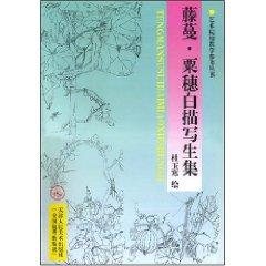vine corn ear line drawing painting set (paperback)(Chinese Edition): DU YU HAN