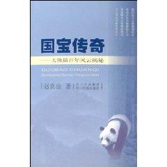 David Legend: Giant Storm Secret Century (Paperback)(Chinese Edition): ZHAO LIANG ZHI