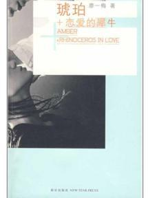 Amber + Rhinoceros In Love(Chinese Edition): LIAO YI MEI