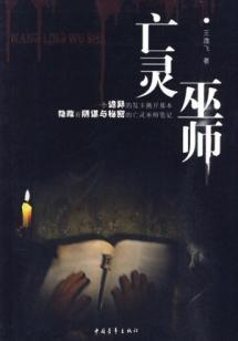 Necromancer [Paperback](Chinese Edition): WANG YI FEI